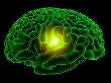 Grönt Te skyddar mot Alzheimers