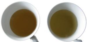 Ekologiskt White Pai Mu Tan, vitt te, Med filtrerat och ofiltrerat vatten